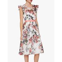 Gina Bacconi Brinda Floral Chiffon Dress, Rose