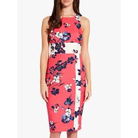 Adrianna Papell Etched Floral Blooms Dress, Red/ivory Multi