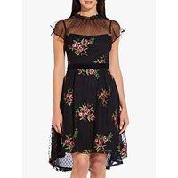 Image of Adrianna Papell Ruffle Collar Rose Dress, Black Multi