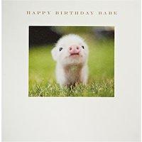 Susan OHanlon Piglet Birthday Card
