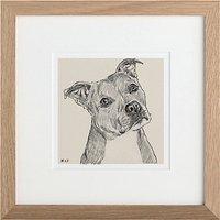 Letterfest Personalised Pet Illustration, 25 x 25cm