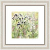 Catherine Stephenson - Agapanthus Grasses 1 Framed Print, 50 x 50cm