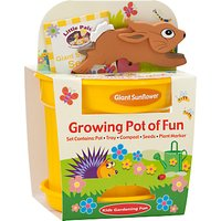 Little Pals Giant Sunflower Growing Pot of Fun