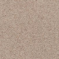 Axminster Devonia Heathers 2 Ply 50oz Twist Carpet
