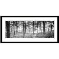 Mike Shepherd - Misty Trees Framed Print, 49 x 104cm