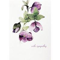Woodmansterne Lilac Hellebore Greeting Card