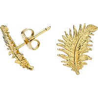 shop for Dower & Hall Small 18ct Gold Vermeil Feather Stud Earrings at Shopo