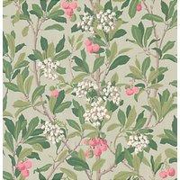 Cole & Son Strawberry Tree Wallpaper