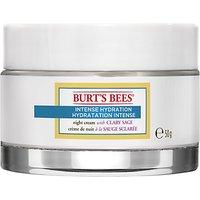 Burt's Bees Intense Hydration Night Cream, 50g