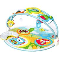 Skip Hop New Explore and More Activity Gym, Multi