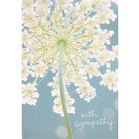 Woodmansterne Sympathy Rising Spirits Card