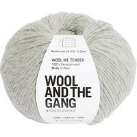 Wool And The Gang Wool Me Tender Chunky Yarn, 100g