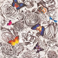 Osborne & Little Butterfly Garden Wallpaper