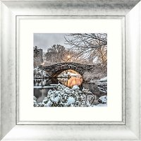 John Anderson - Icon Of Central Park Framed Print, 53 x 53cm