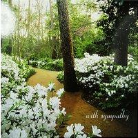Woodmansterne Woodland Sympathy Card