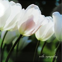 Woodmansterne White Tulips Sympathy Card
