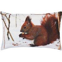 John Lewis Red Squirrel Cushion, Multi