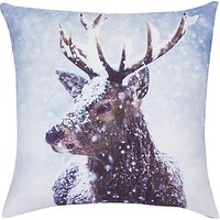 John Lewis Stag Cushion, Multi