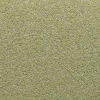 Adam Carpets Aviemore Twist Carpet