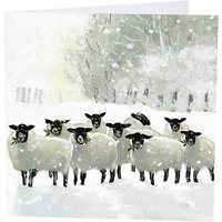 art marketing shepherds watch charity cards, pack of 6