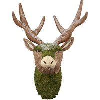 John Lewis Into the Woods Mossy Deer Head Hanging Decoration