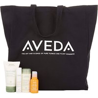 AVEDA Travel Essentials Kit