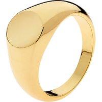 Melissa Odabash Signet Ring, Gold