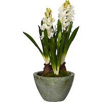 John lewis partners artificial hyacinth offer of the day john lewis partners artificial hyacinth pot cream mightylinksfo