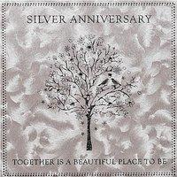 Five Dollar Shake Silver Wedding Anniversary Card