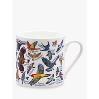 McLaggan Smith Educational Birds Mug, 350ml