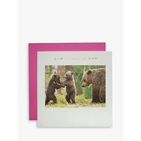 Susan O'hanlon Bear And Cubs Mother's Day Card