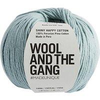 Wool and the Gang Shiny Happy Aran Yarn, 100g