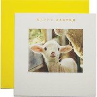 Susan O'hanlon Lamb's Head Easter Greeting Card
