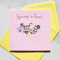 Belly Button Designs Spring Is Here Easter Greeting Card