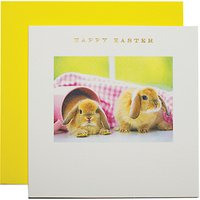 Susan O'hanlon Bunnies Easter Greeting Card