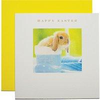 Susan O'hanlon Bunny In Foot Easter Greeting Card