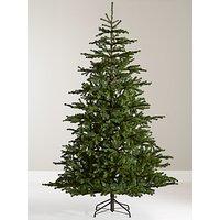 John Lewis & Partners Emerald Peruvian Pine Unlit Christmas Tree, 7ft