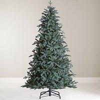John Lewis & Partners Serbian Blue Spruce Unlit Christmas Tree, 7ft