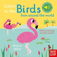 Listen to the Birds From Around the World Childrens Board Book