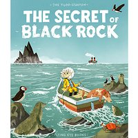 The Secret Of Black Rock Children's Book