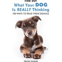 Allsorted What Is Your Dog Thinking Book