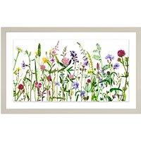 Adelene Fletcher - Botanical Floral Framed Print & Mount, 26 x 42cm
