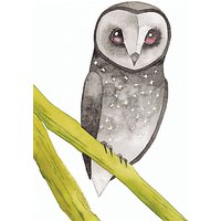 Woodmansterne Greater Sooty Owl Card