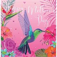 Belly Button Designs Hummingbird Mother's Day Card
