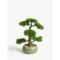 John Lewis and Partners Artificial Bonsai Pine Tree