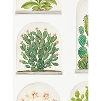 Sanderson Terrariums Wallpaper