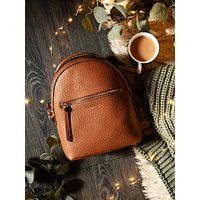 shop for Fiorelli Anouk Backpack at Shopo