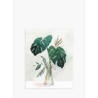 Cheese Plant & Jar - Unframed Prints, Set of 2, 50 x 40cm, Green