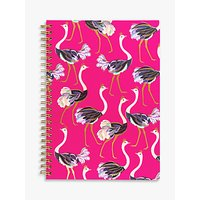 Sara Miller A5 Ostriches Notebook