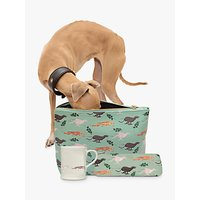 Fenella Smith Fast Dog Lovers Gift Set